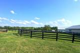 4486 Buck Creek Rd - Photo 62