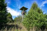 1205 Hickory Ridge Rd - Photo 47