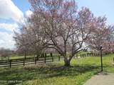 4876 Shelbyville Rd - Photo 12