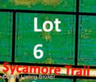 6 Sycamore Trail - Photo 2