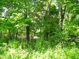 1637 Old Seven Mile Pike - Photo 60