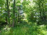 1637 Old Seven Mile Pike - Photo 65