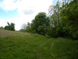 1637 Old Seven Mile Pike - Photo 47