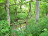 1637 Old Seven Mile Pike - Photo 48
