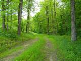 1637 Old Seven Mile Pike - Photo 50