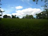 1637 Old Seven Mile Pike - Photo 51