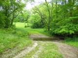 1637 Old Seven Mile Pike - Photo 52