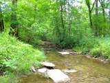 1637 Old Seven Mile Pike - Photo 53