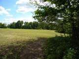 1637 Old Seven Mile Pike - Photo 57