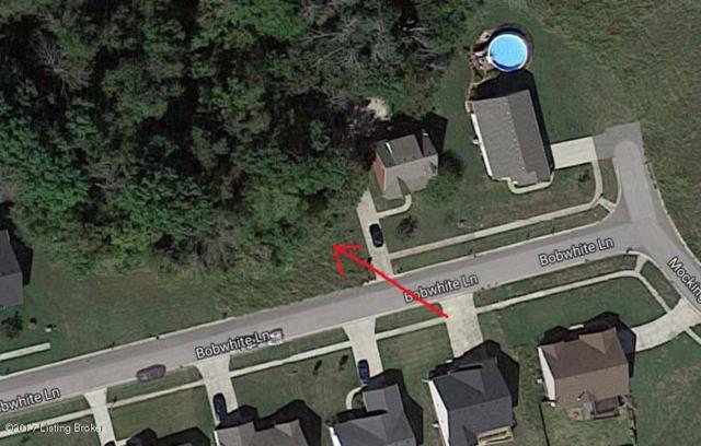 28 Bobwhite Ln, Taylorsville, KY 40071 (#1479979) :: The Sokoler-Medley Team