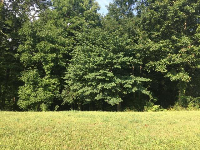 Lot 111 Scenic View Dr, Mt Washington, KY 40047 (#1483283) :: The Sokoler-Medley Team