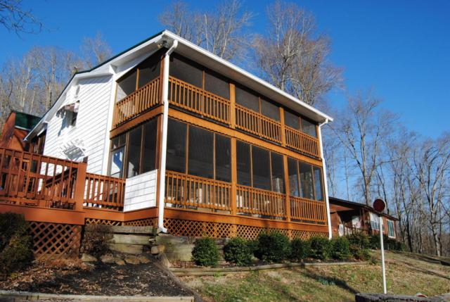 549 Willow Ln, Bee Springs, KY 42207 (#1491646) :: Segrest Group