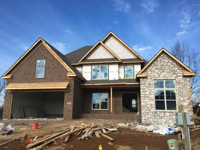 5403 River Rock Dr, Louisville, KY 40241 (#1492362) :: Team Panella
