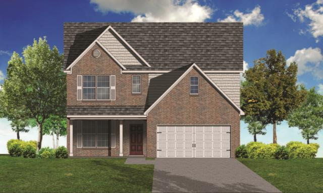18214 Hickory Woods Pl, Fisherville, KY 40023 (#1493744) :: Team Panella