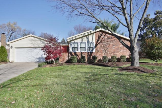 317 Fairemeade Rd, Louisville, KY 40207 (#1494023) :: The Sokoler-Medley Team