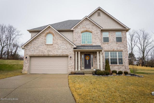17903 Duckleigh Ct, Louisville, KY 40023 (#1494025) :: The Sokoler-Medley Team