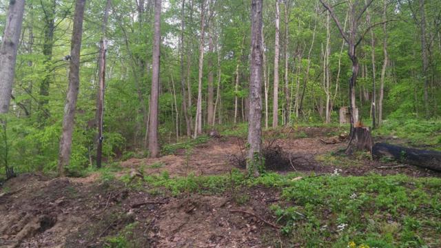 115 Hollow Creek Ct, Mammoth Cave, KY 42259 (#1495462) :: The Sokoler-Medley Team