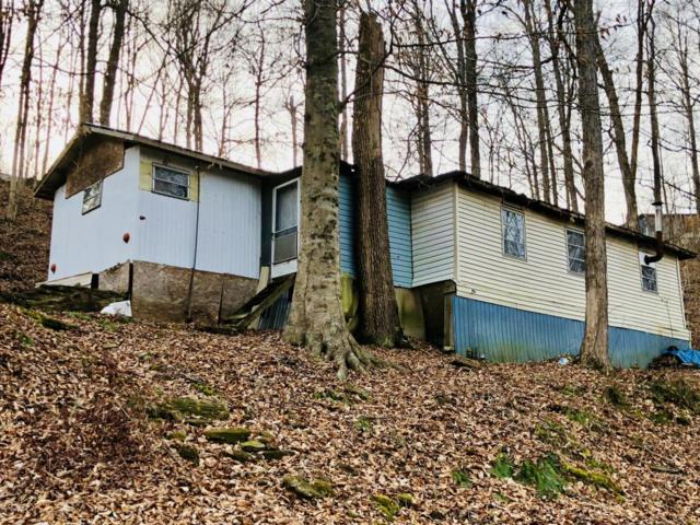 1196 Lakeway Dr, Cub Run, KY 42729 (#1496067) :: The Stiller Group