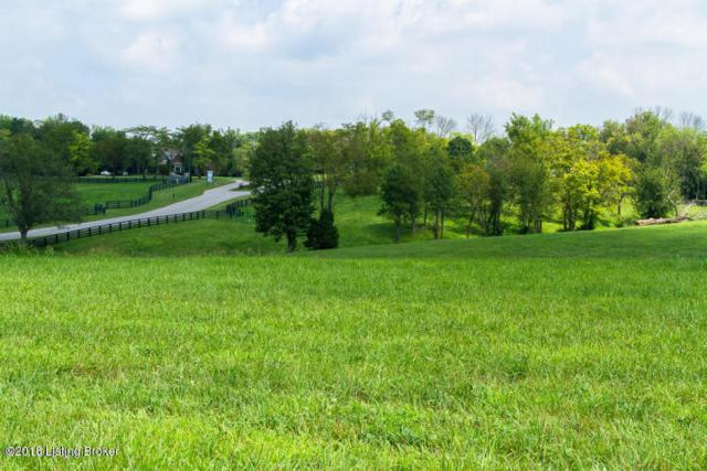 Lot 14 Equestrian Lakes Ln, Finchville, KY 40022 (#1496183) :: The Stiller Group