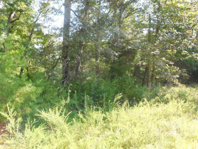 1C Woodland Acres, Cub Run, KY 42729 (#1496715) :: The Sokoler-Medley Team