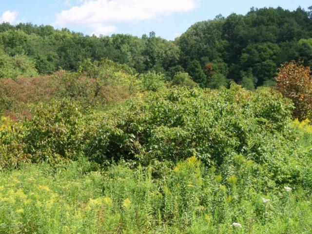 41 E Audubon Dr, Shepherdsville, KY 40165 (#1497968) :: The Sokoler-Medley Team