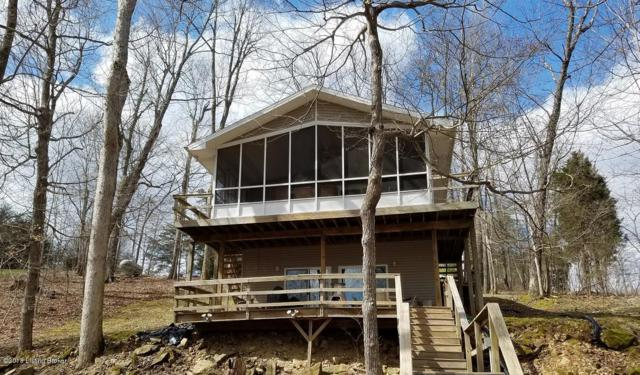 537 Paulette Way, Falls Of Rough, KY 40119 (#1497979) :: The Stiller Group