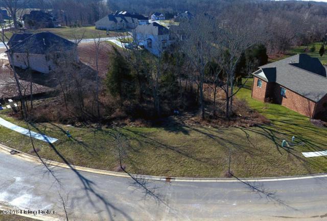 17008 Shakes Creek Dr, Louisville, KY 40023 (#1499253) :: Team Panella