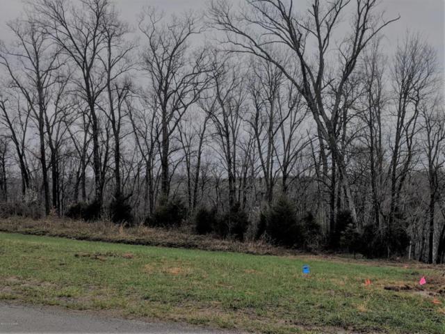 0 E Millwater Falls, Shepherdsville, KY 40165 (#1499300) :: The Sokoler-Medley Team