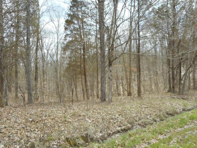 4 Briar Ridge Rd, Taylorsville, KY 40071 (#1500515) :: The Elizabeth Monarch Group