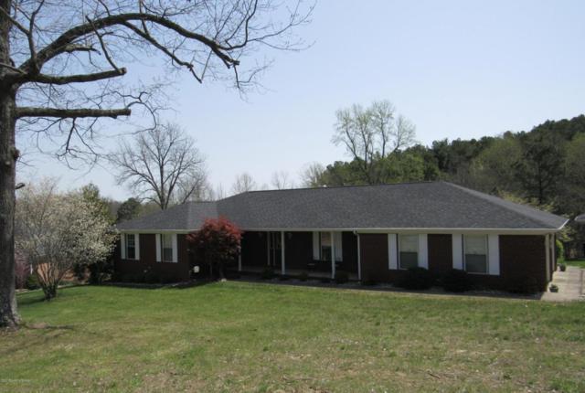 130 Twin Oaks Dr, Leitchfield, KY 42754 (#1501075) :: The Sokoler-Medley Team