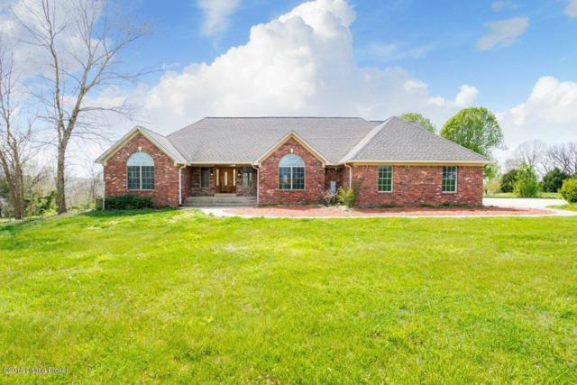 729 Ables Mountain Ln, West Point, KY 40177 (#1501200) :: Segrest Group