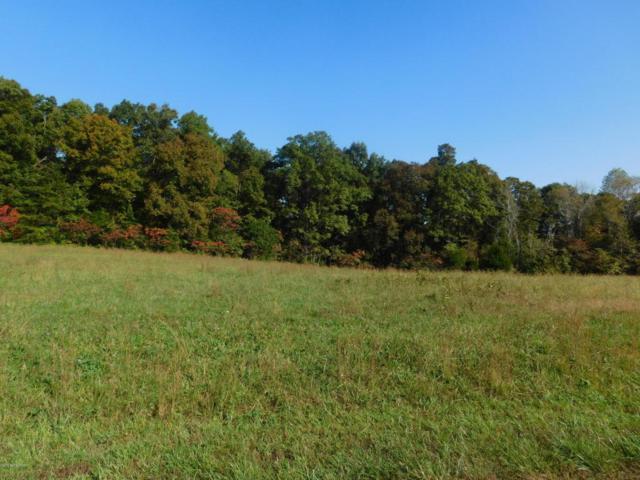 10 Indian Cliff Estates, Clarkson, KY 42726 (#1501411) :: The Sokoler-Medley Team