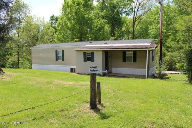 315 Indian Ridge Rd, Falls Of Rough, KY 40119 (#1501899) :: The Sokoler-Medley Team