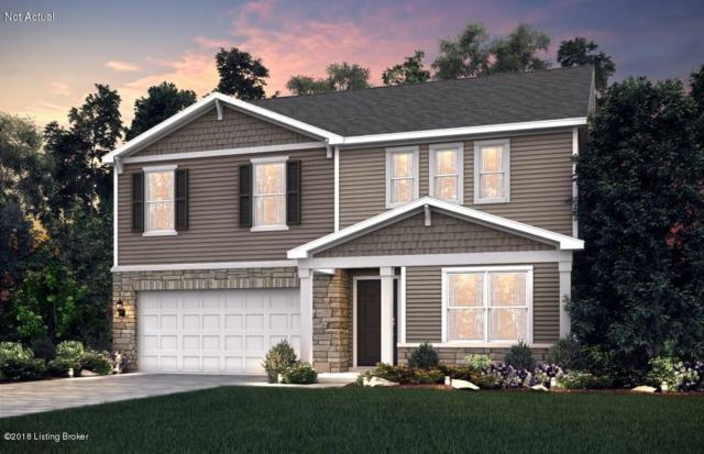 12097 Parkview Trace Dr, Louisville, KY 40229 (#1502231) :: The Sokoler-Medley Team