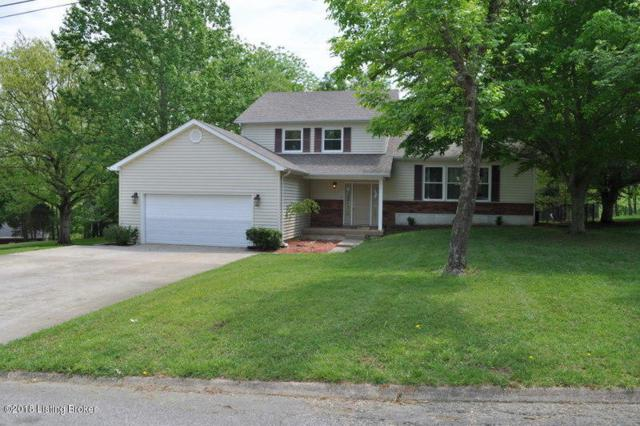 276 Pinnacle Dr, Brandenburg, KY 40108 (#1502731) :: The Sokoler-Medley Team