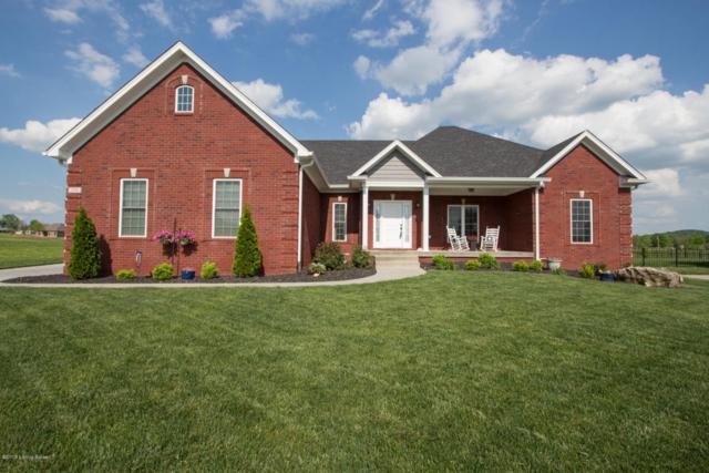294 Heritage Hill Pkwy, Shepherdsville, KY 40165 (#1502803) :: Segrest Group