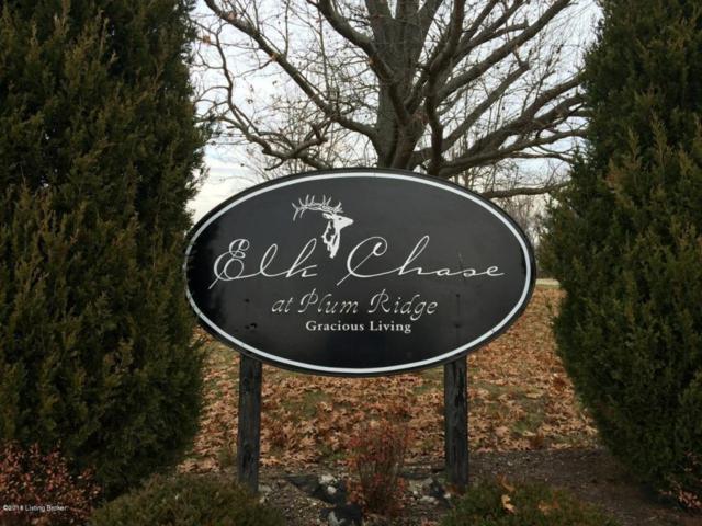 Lot 28 Elk Chase Dr, Taylorsville, KY 40071 (#1503429) :: The Sokoler-Medley Team