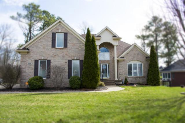 415 Landis Lakes Ct, Louisville, KY 40245 (#1503563) :: The Sokoler-Medley Team