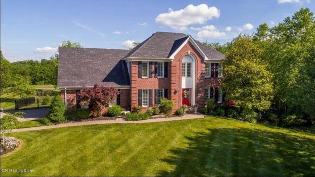 1205 Cherry Hills Ct, Louisville, KY 40245 (#1504497) :: The Sokoler-Medley Team