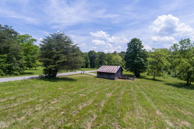 2421 Tract 1 Dickeys Mill Rd, Leitchfield, KY 42754 (#1504723) :: The Stiller Group