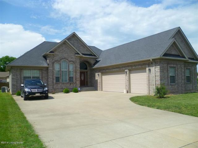 121 Victory Lake Dr, Vine Grove, KY 40175 (#1504930) :: The Stiller Group
