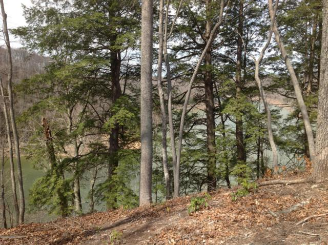 #2 View Pointe Dr, Jamestown, KY 42629 (#1505607) :: The Sokoler-Medley Team