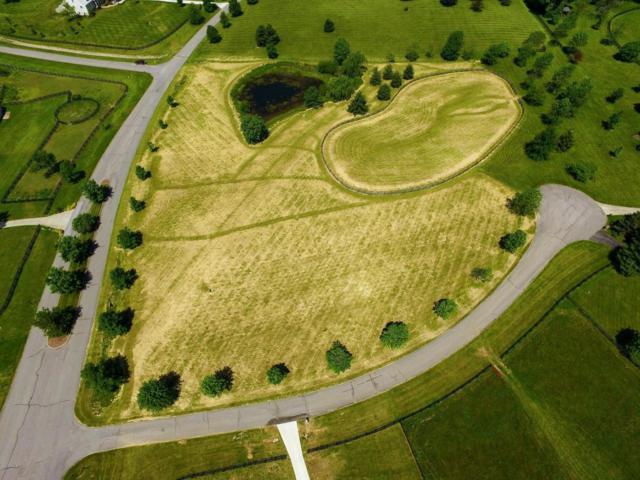 05 Majestic Oaks Way, Simpsonville, KY 40067 (#1505886) :: The Stiller Group