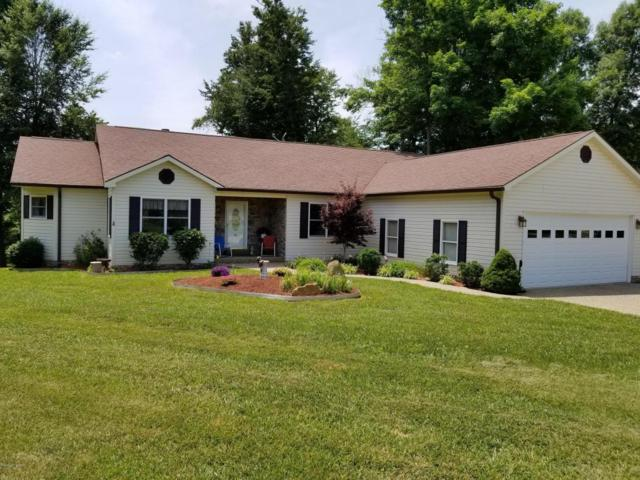 858 Patriots Landing Ln, Falls Of Rough, KY 40119 (#1506438) :: The Stiller Group
