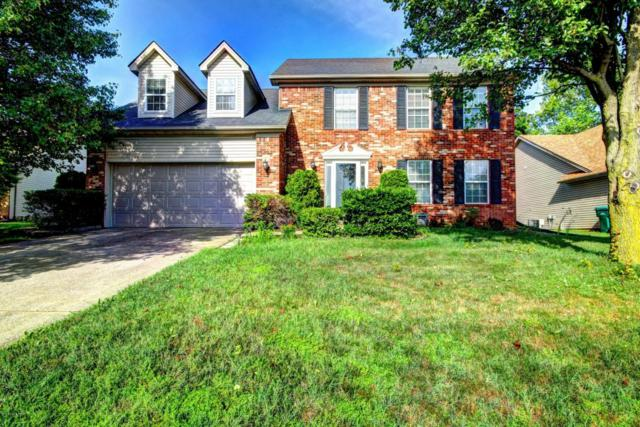 10913 Sweet Water Dr, Louisville, KY 40241 (#1506450) :: The Sokoler-Medley Team
