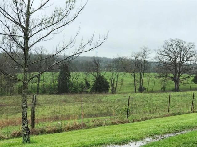 1156 Pumphouse Rd, Lawrenceburg, KY 40342 (#1506747) :: The Stiller Group