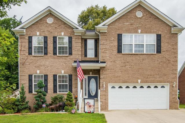 339 Vineland Place Dr, Vine Grove, KY 40175 (#1507145) :: Segrest Group