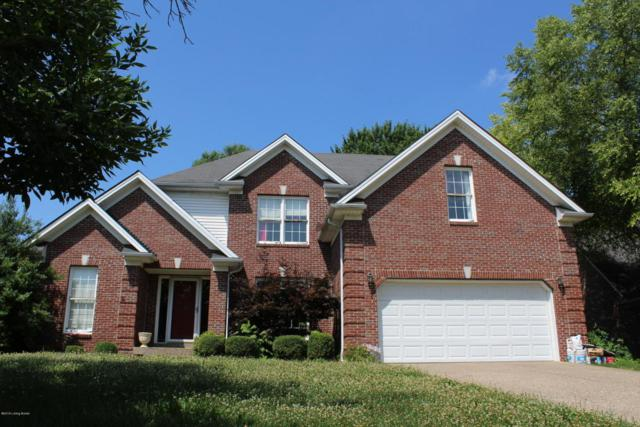 9914 Wyncliff Ct, Louisville, KY 40241 (#1507371) :: The Sokoler-Medley Team