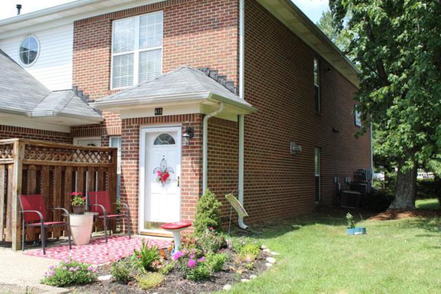 415 Blue Rose Ct, Louisville, KY 40223 (#1508439) :: Segrest Group