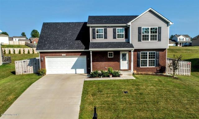 205 Huckaberry St, Elizabethtown, KY 42701 (#1509038) :: Segrest Group